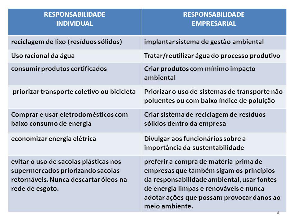 RESPONSABILIDADE INDIVIDUAL. EMPRESARIAL. reciclagem de lixo (resíduos sólidos) implantar sistema de gestão ambiental.