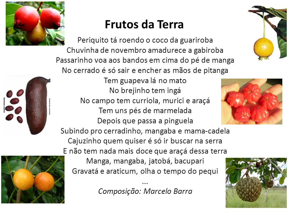 ... Composição: Marcelo Barra