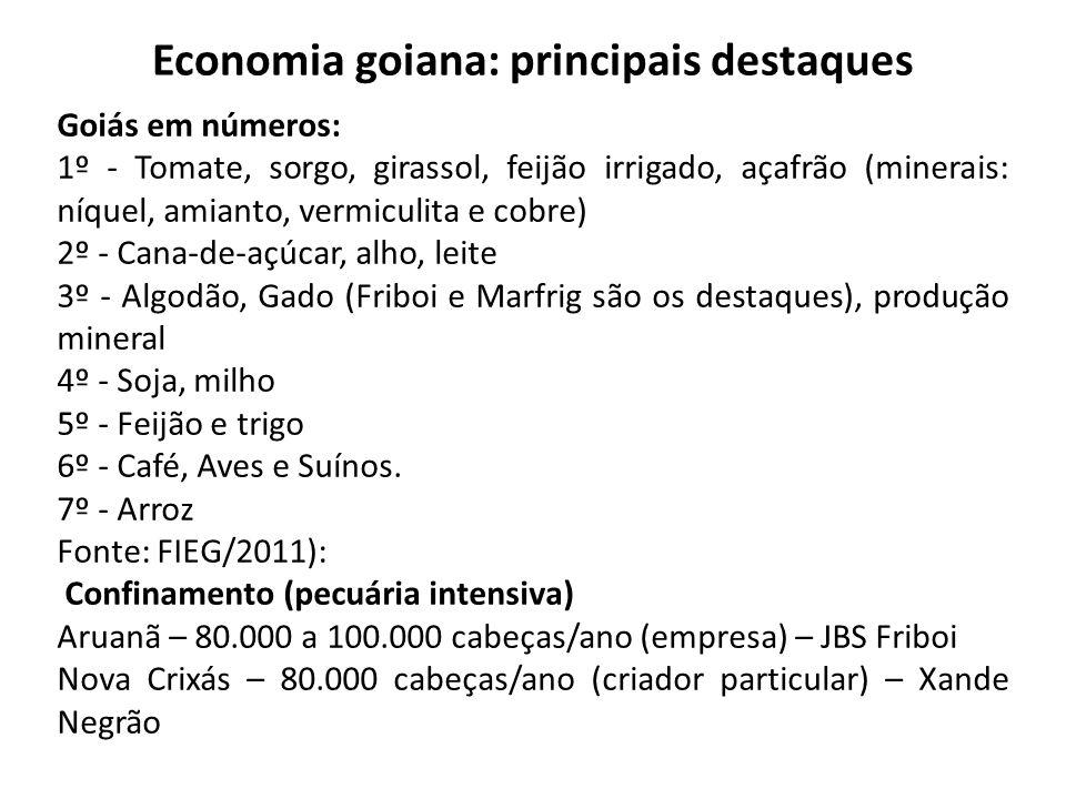 Economia goiana: principais destaques
