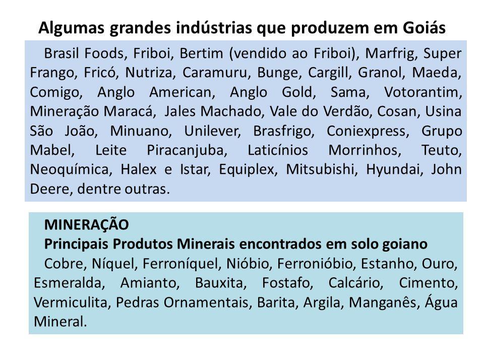 Algumas grandes indústrias que produzem em Goiás