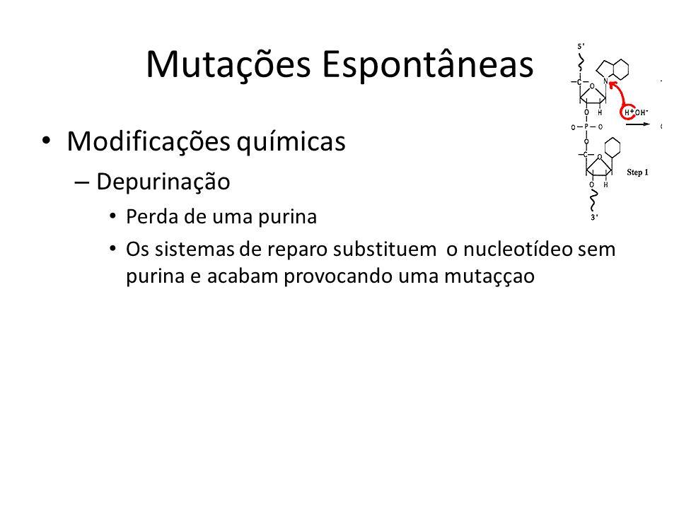 Mutações Espontâneas Modificações químicas Depurinação