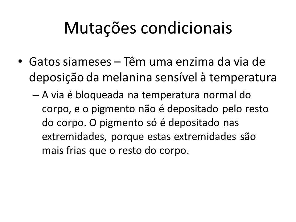 Mutações condicionais