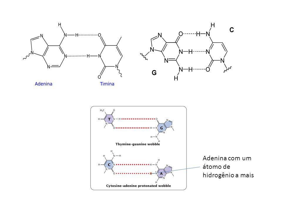 Adenina com um átomo de hidrogênio a mais