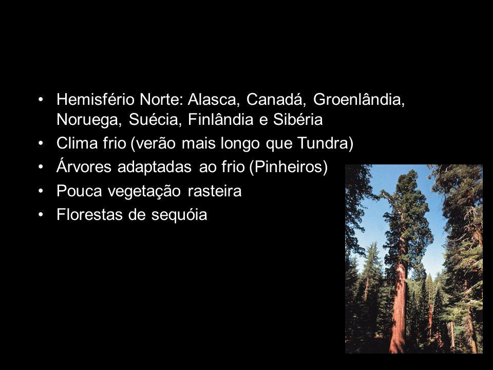 Hemisfério Norte: Alasca, Canadá, Groenlândia, Noruega, Suécia, Finlândia e Sibéria