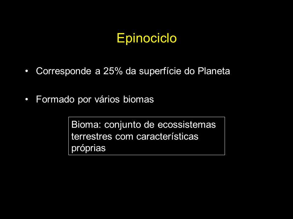 Epinociclo Corresponde a 25% da superfície do Planeta