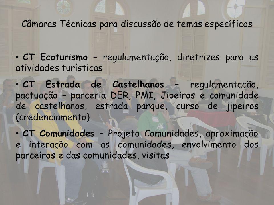 Câmaras Técnicas para discussão de temas específicos