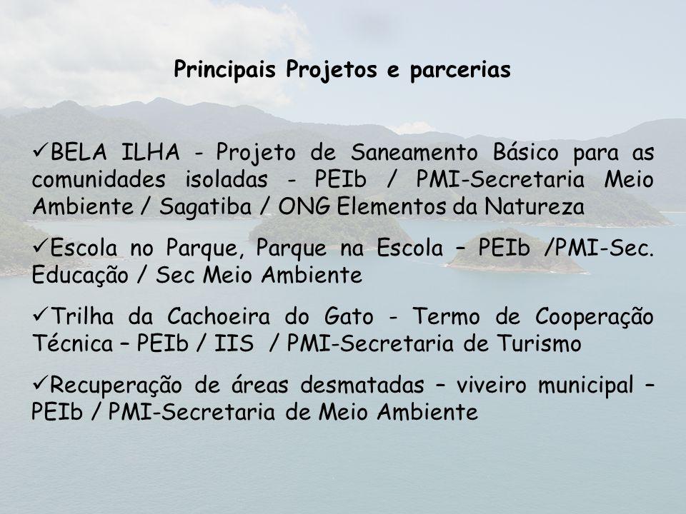 Principais Projetos e parcerias