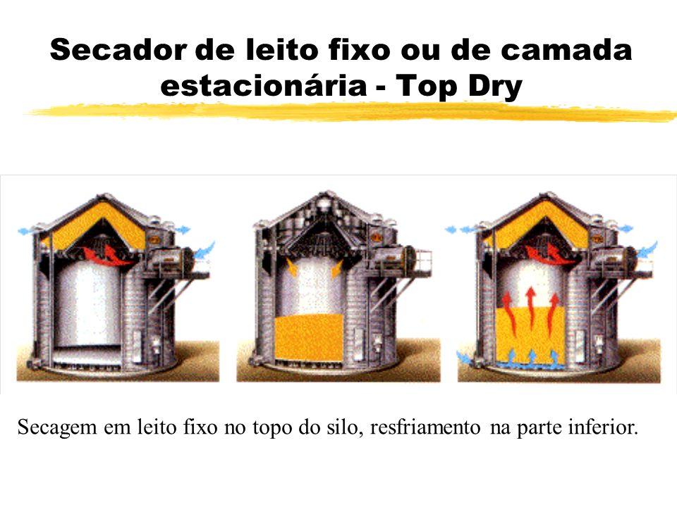 Secador de leito fixo ou de camada estacionária - Top Dry