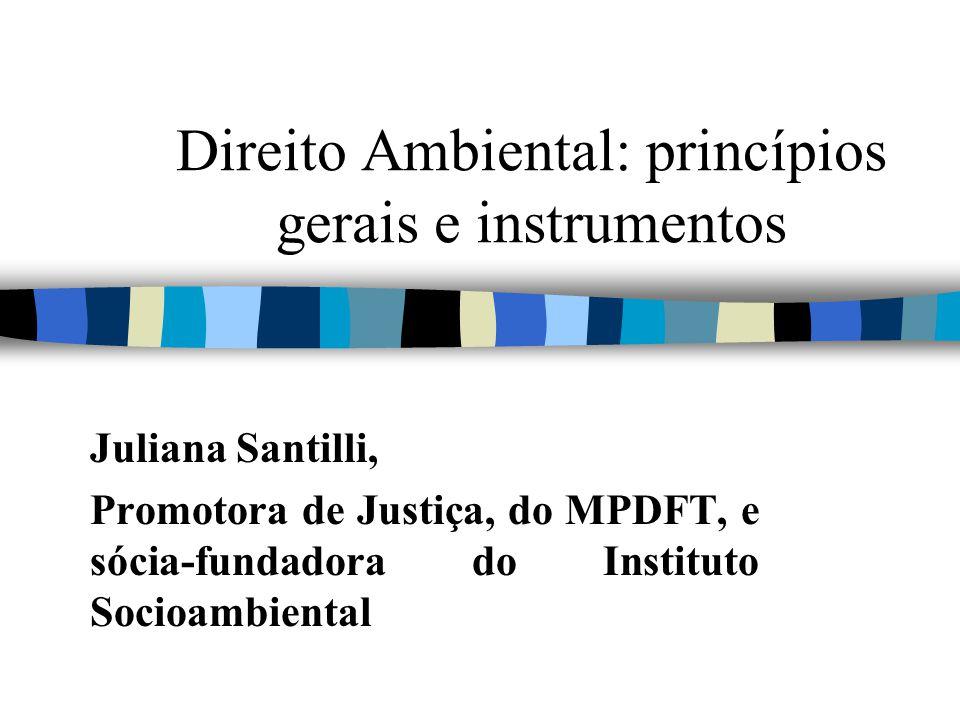 Direito Ambiental: princípios gerais e instrumentos