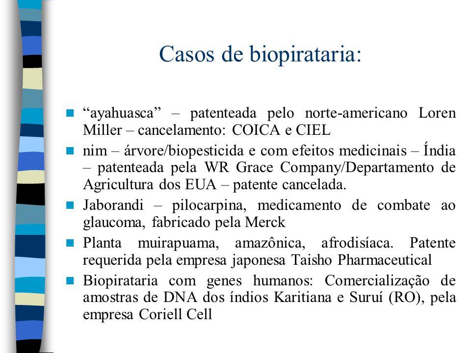 Casos de biopirataria: