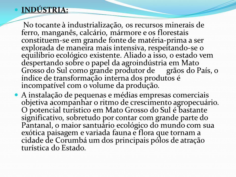 INDÚSTRIA: No tocante à industrialização, os recursos minerais de ferro, manganês, calcário, mármore e os florestais constituem-se em grande fonte de matéria-prima a ser explorada de maneira mais intensiva, respeitando-se o equilíbrio ecológico existente. Aliado a isso, o estado vem despertando sobre o papel da agroindústria em Mato Grosso do Sul como grande produtor de grãos do País, o índice de transformação interna dos produtos é incompatível com o volume da produção.