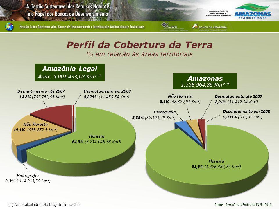 Perfil da Cobertura da Terra % em relação às áreas territoriais
