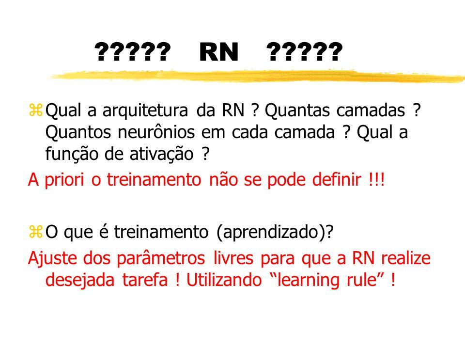 RN Qual a arquitetura da RN Quantas camadas Quantos neurônios em cada camada Qual a função de ativação