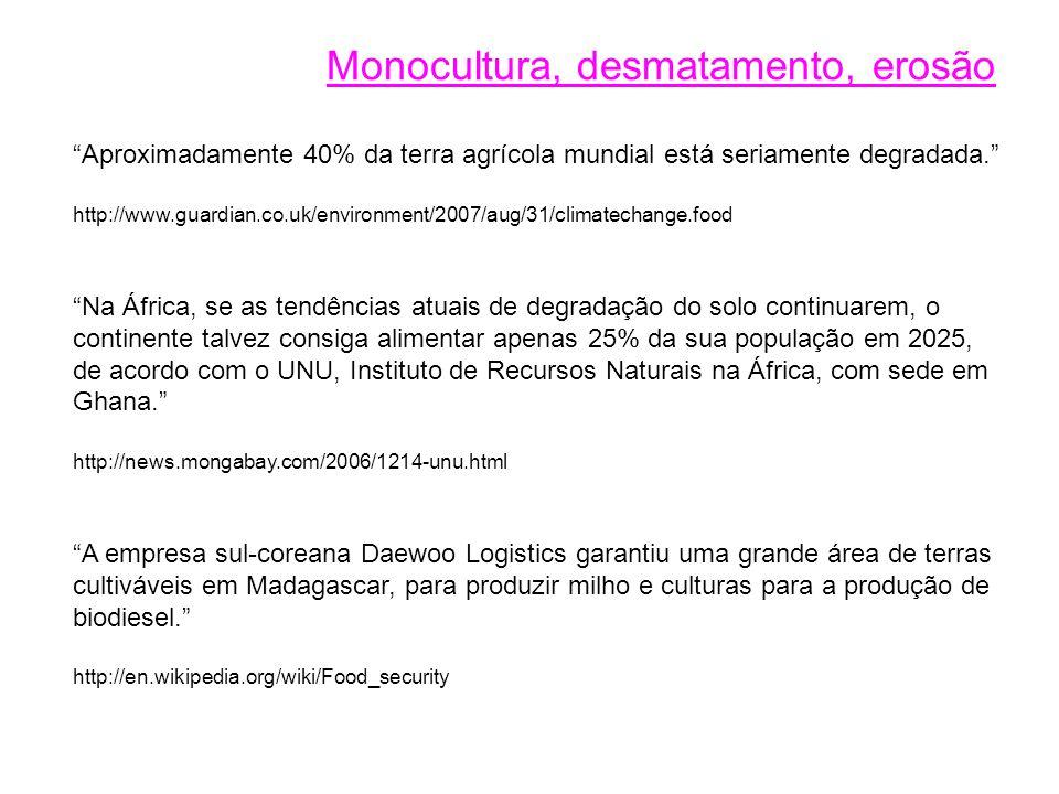 Monocultura, desmatamento, erosão
