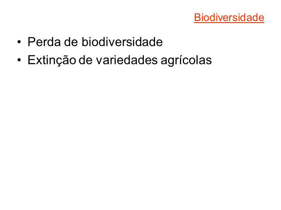 Perda de biodiversidade Extinção de variedades agrícolas