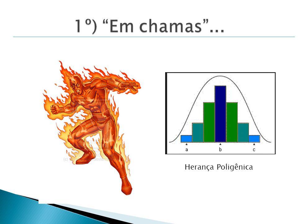 1º) Em chamas ... Herança Poligênica