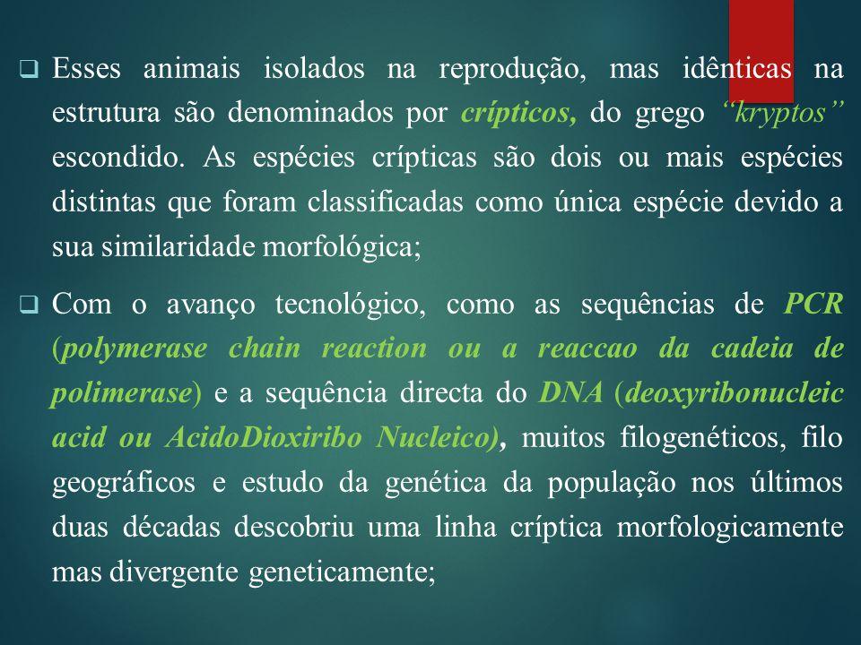 Esses animais isolados na reprodução, mas idênticas na estrutura são denominados por crípticos, do grego kryptos escondido. As espécies crípticas são dois ou mais espécies distintas que foram classificadas como única espécie devido a sua similaridade morfológica;