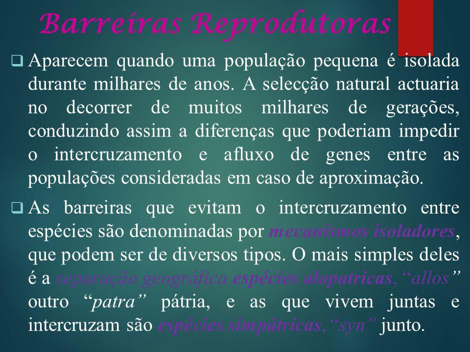 Barreiras Reprodutoras