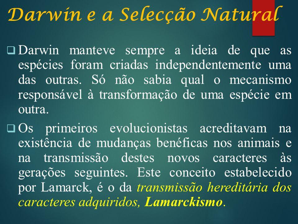 Darwin e a Selecção Natural