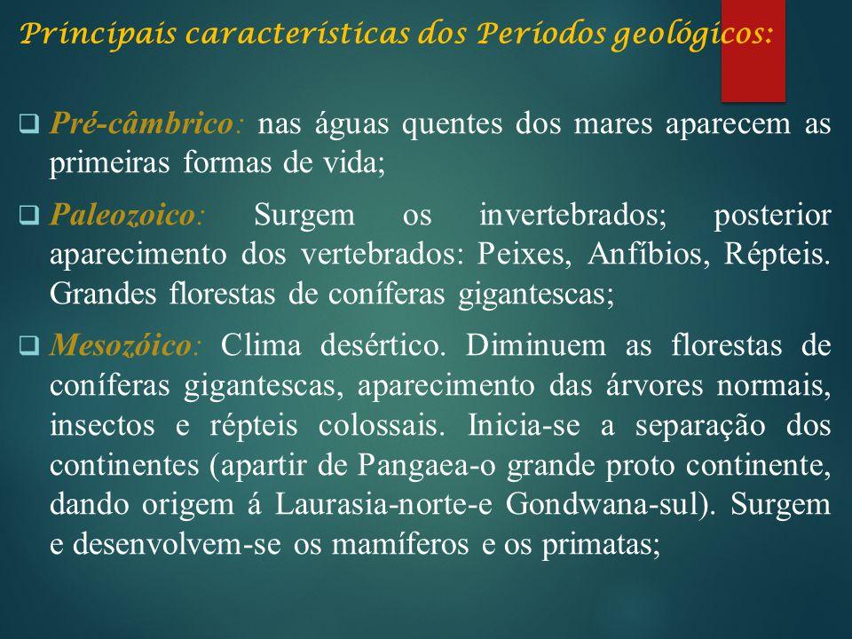 Principais características dos Períodos geológicos: