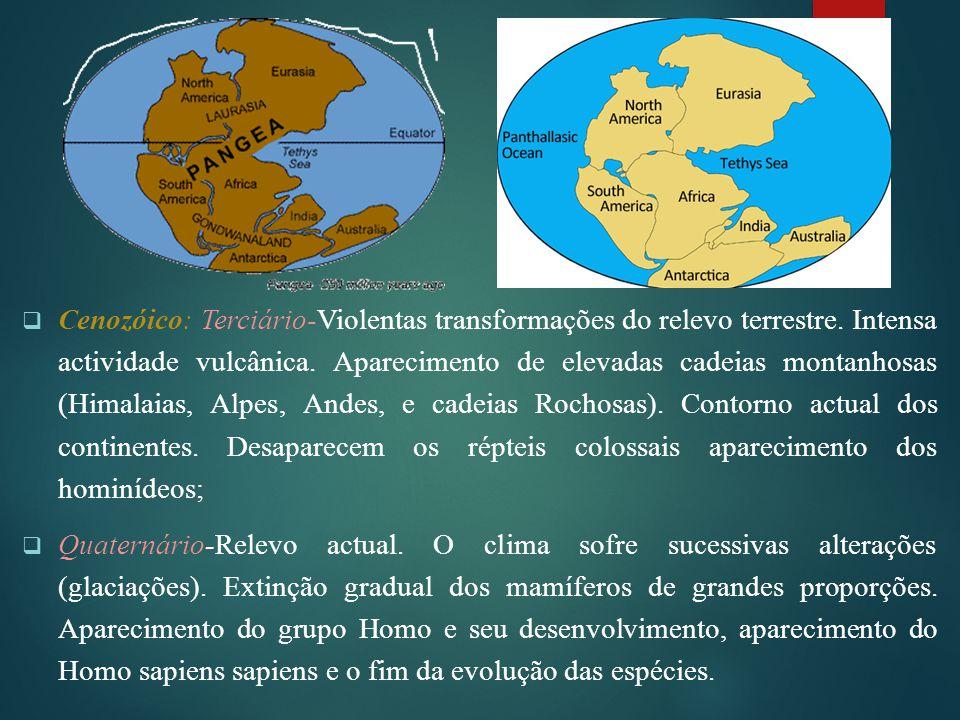 Cenozóico: Terciário-Violentas transformações do relevo terrestre