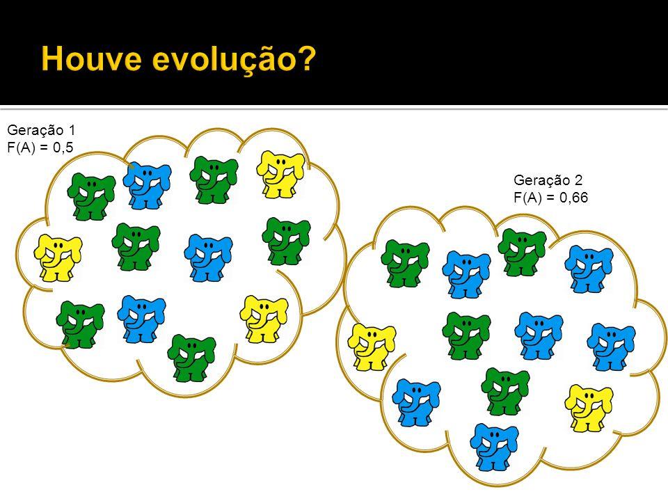 Houve evolução Geração 1 F(A) = 0,5 Geração 2 F(A) = 0,66