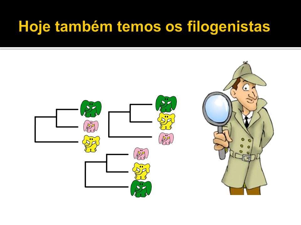 Hoje também temos os filogenistas