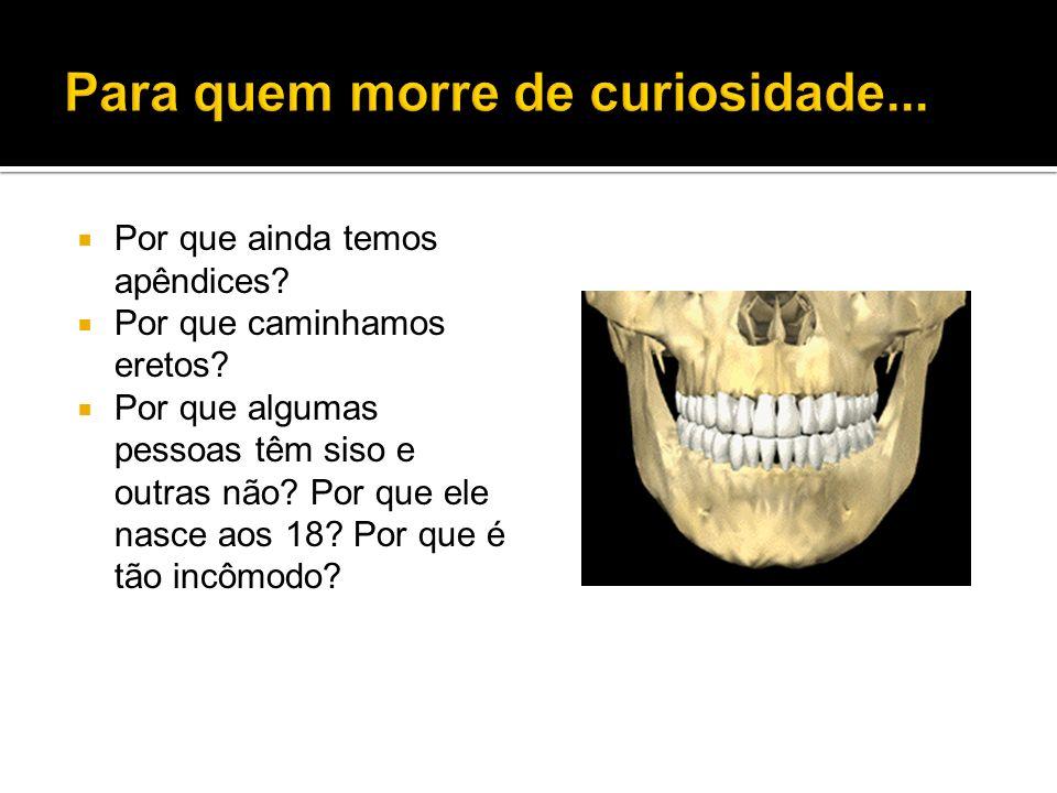 Para quem morre de curiosidade...
