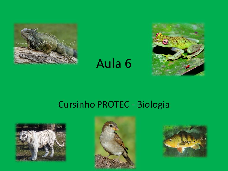 Cursinho PROTEC - Biologia