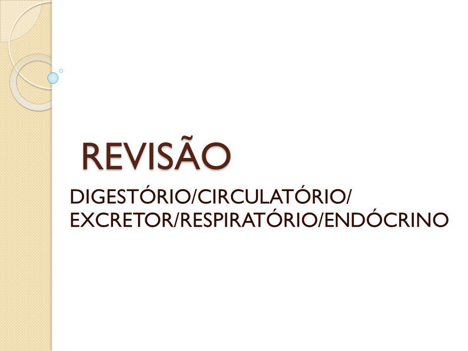 DIGESTÓRIO/CIRCULATÓRIO/ EXCRETOR/RESPIRATÓRIO/ENDÓCRINO