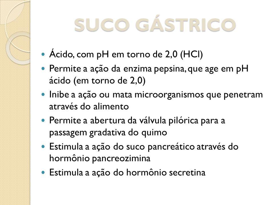 SUCO GÁSTRICO Ácido, com pH em torno de 2,0 (HCl)