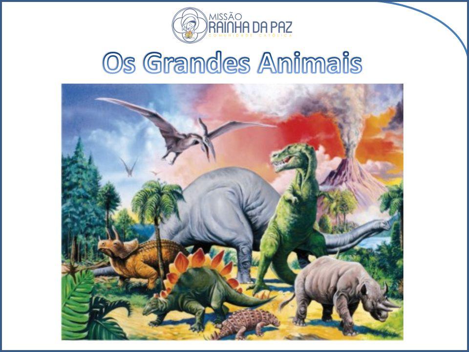 Os Grandes Animais