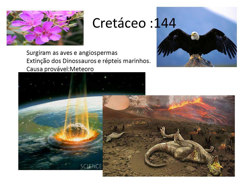 Cretáceo :144 Surgiram as aves e angiospermas