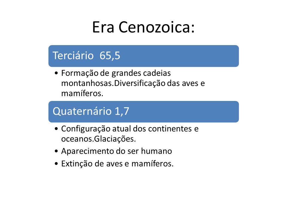 Era Cenozoica: Terciário 65,5 Quaternário 1,7