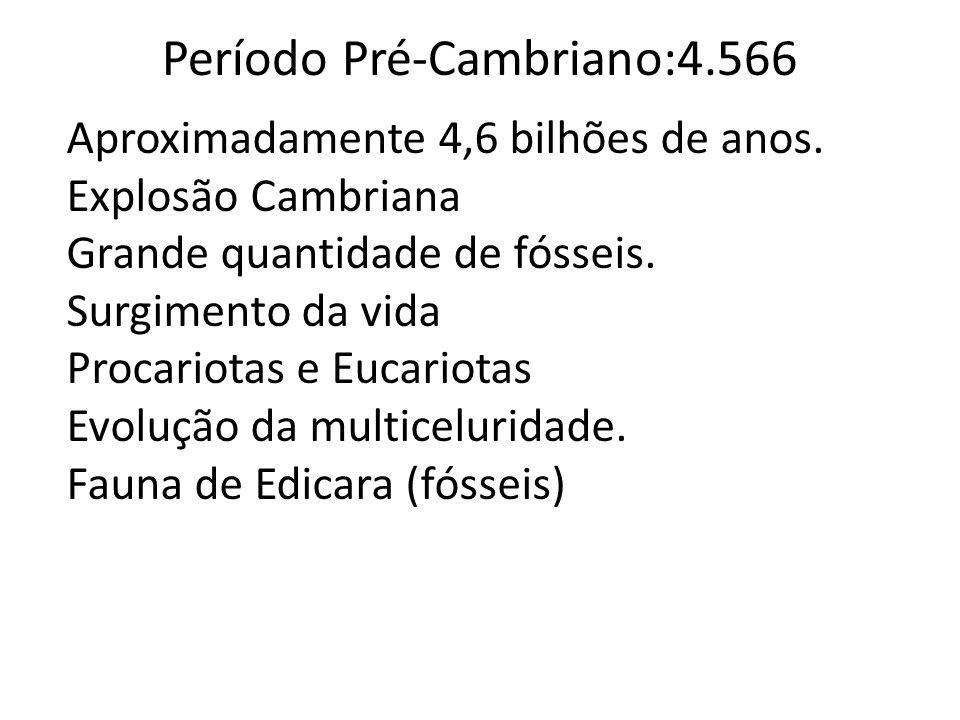 Período Pré-Cambriano:4.566