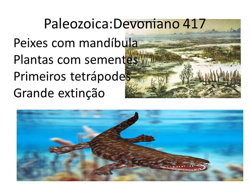Paleozoica:Devoniano 417