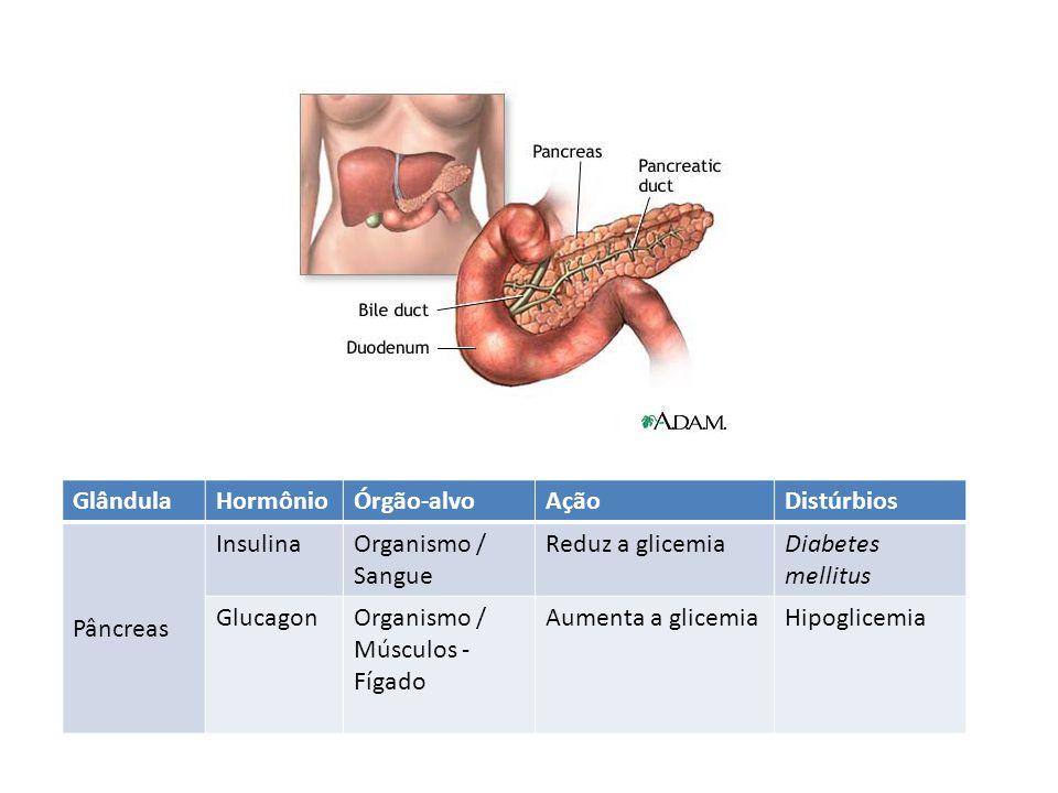 Glândula Hormônio. Órgão-alvo. Ação. Distúrbios. Pâncreas. Insulina. Organismo / Sangue. Reduz a glicemia.