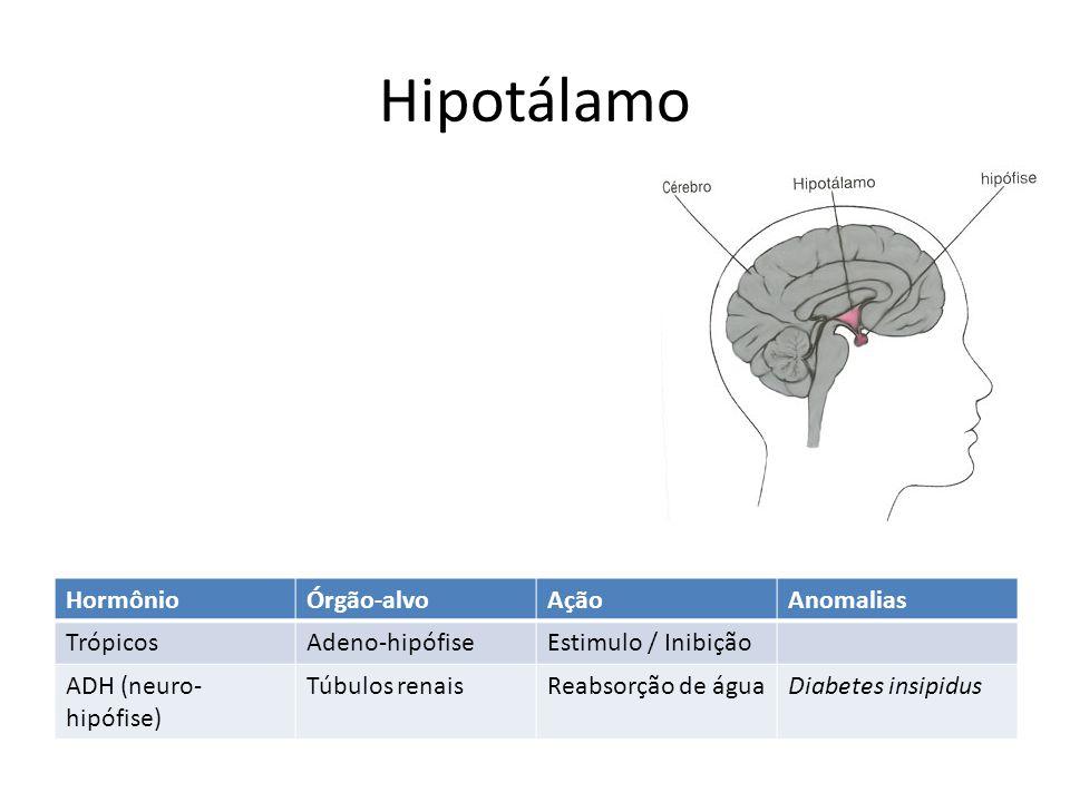 Hipotálamo Hormônio Órgão-alvo Ação Anomalias Trópicos Adeno-hipófise
