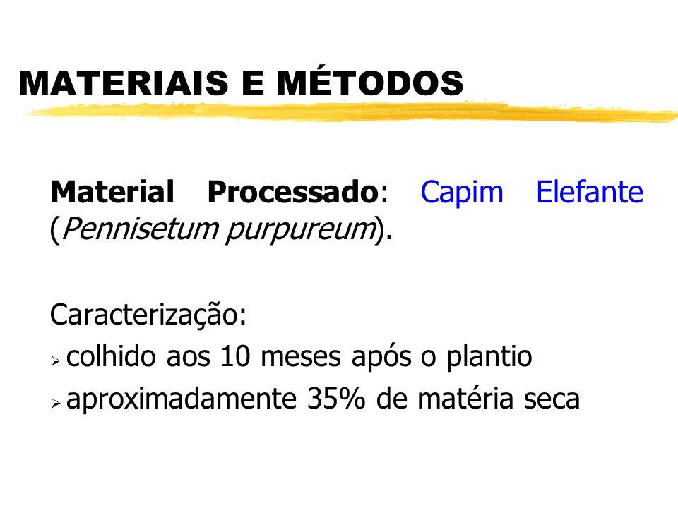 MATERIAIS E MÉTODOS Material Processado: Capim Elefante (Pennisetum purpureum). Caracterização: colhido aos 10 meses após o plantio.