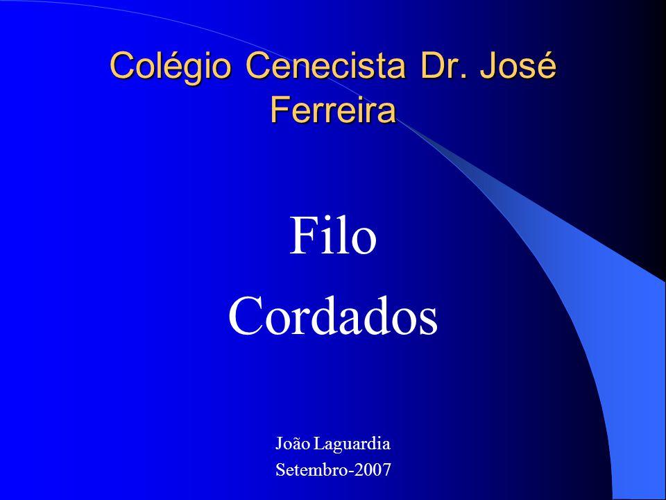 Colégio Cenecista Dr. José Ferreira