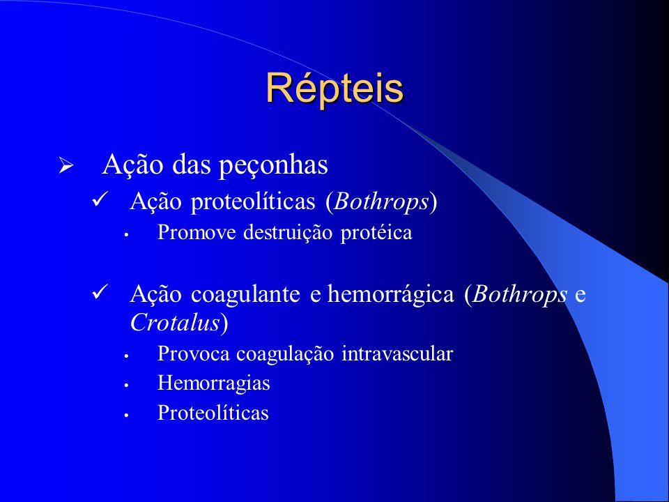 Répteis Ação das peçonhas Ação proteolíticas (Bothrops)