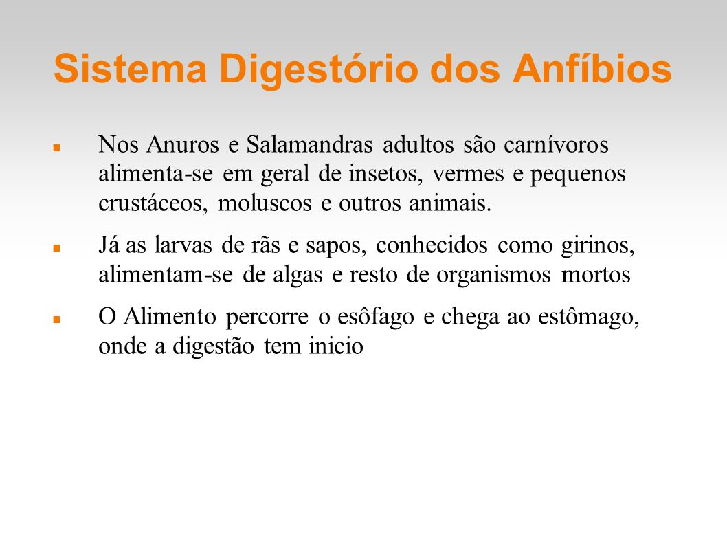 Sistema Digestório dos Anfíbios
