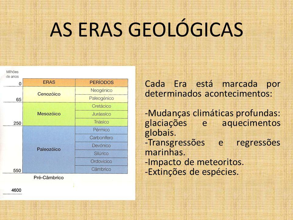 AS ERAS GEOLÓGICAS Cada Era está marcada por determinados acontecimentos: Mudanças climáticas profundas: glaciações e aquecimentos globais.