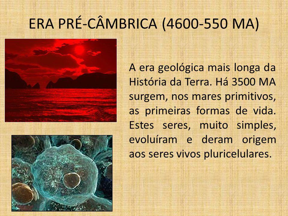 ERA PRÉ-CÂMBRICA (4600-550 MA)