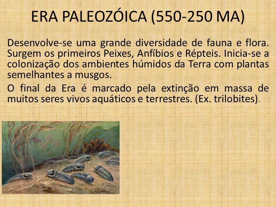 ERA PALEOZÓICA (550-250 MA)