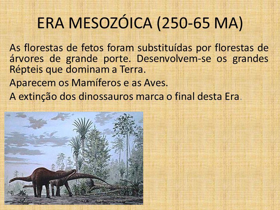 ERA MESOZÓICA (250-65 MA)