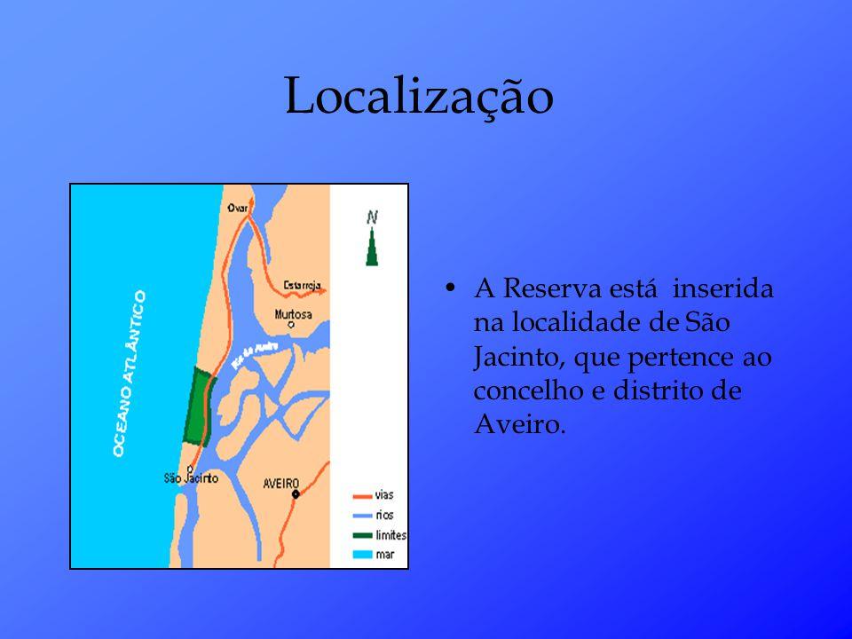 Localização A Reserva está inserida na localidade de São Jacinto, que pertence ao concelho e distrito de Aveiro.