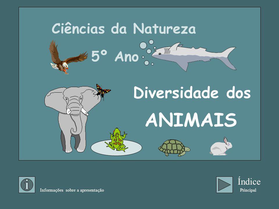ANIMAIS Diversidade dos Ciências da Natureza 5º Ano Índice