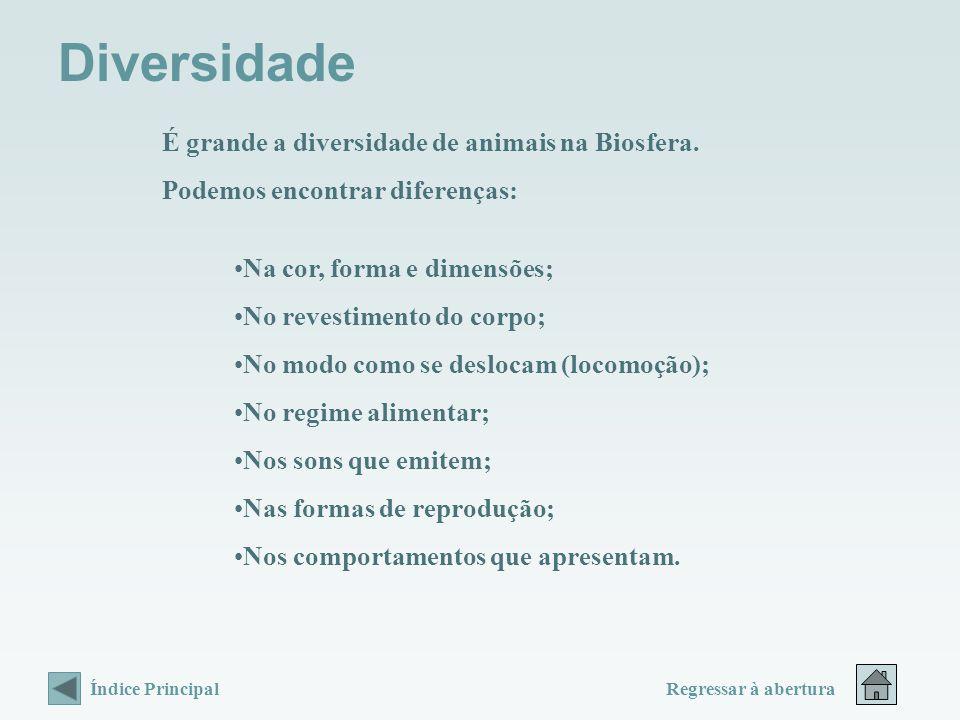 Diversidade É grande a diversidade de animais na Biosfera.
