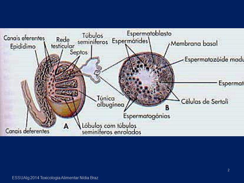 ESSUAlg 2014 Toxicologia Alimentar Nídia Braz